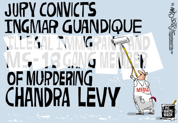 chandra levy trial cartoon by mike lester